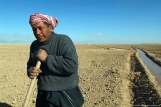 Digging_irrigation_channels,_Palmyra,_Syria