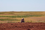 Parched_ground_-_Flickr_-_Al_Jazeera_English