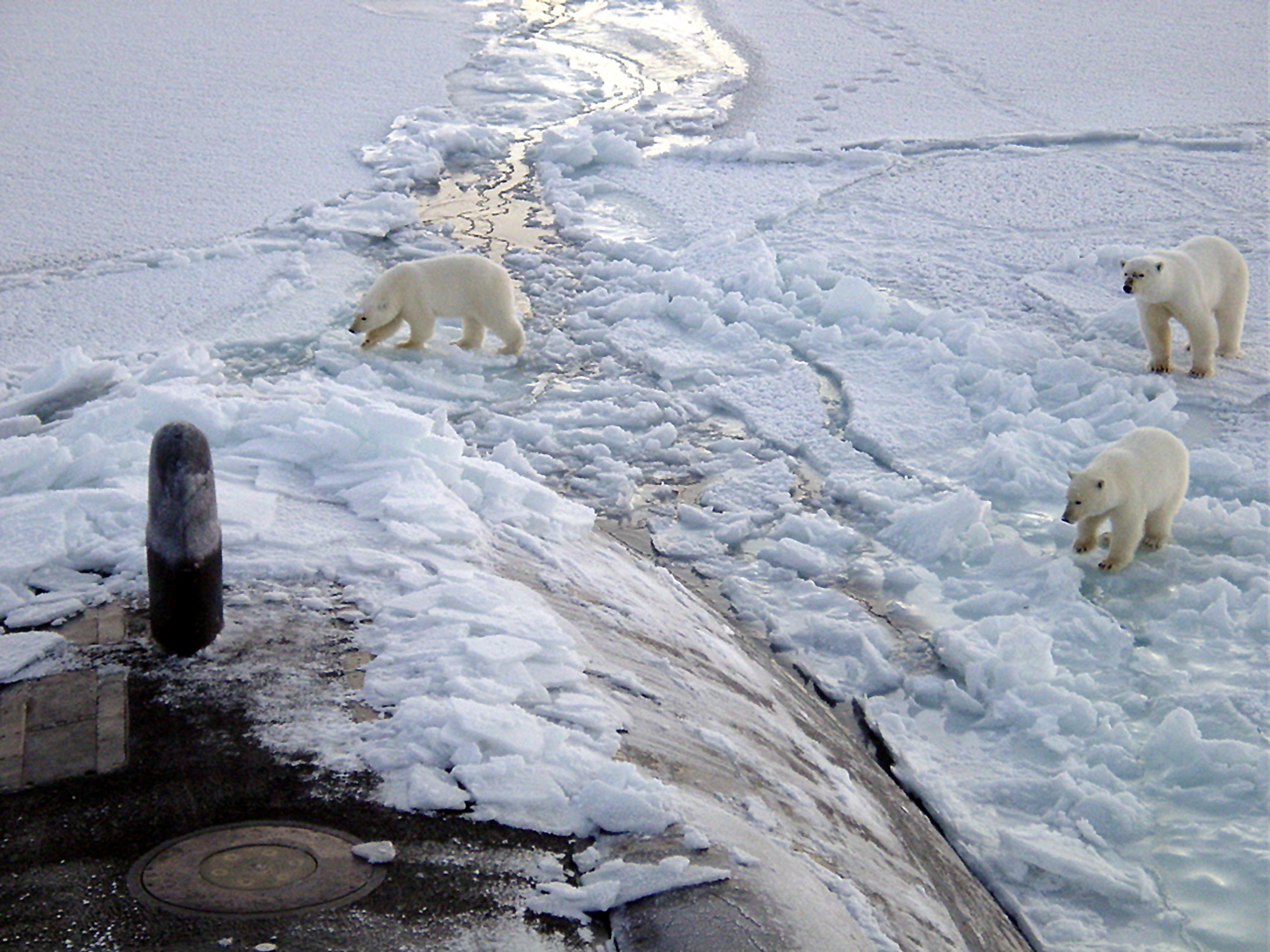 U S  Navy Announces Early End to Alaskan Ice Camp | The Center for