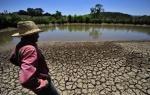 Brazil_dry earth in Ibirapuera Park Sao Paulo