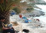 beach_reading