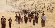 Syria migration